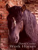 Cover of poetry book Work Horses